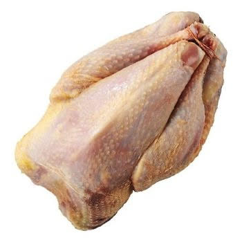 Fazant hen